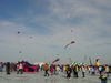 Kites_on_ice